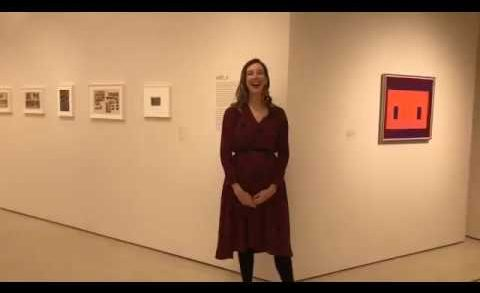 "Live from the Guggenheim: ""Josef Albers in Mexico"" Exhibition Tour (part 1)"