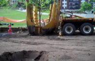 Planting trees in Open Field